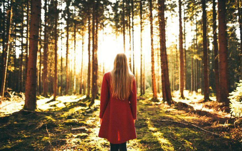 prevención de quemaduras en el bosque