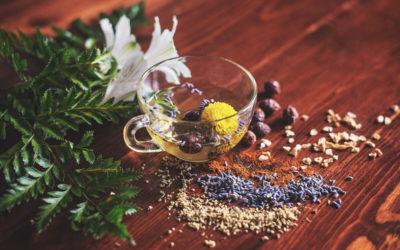 nerven-staerken-4-wirksame-heilpflanzen-gegen-stress